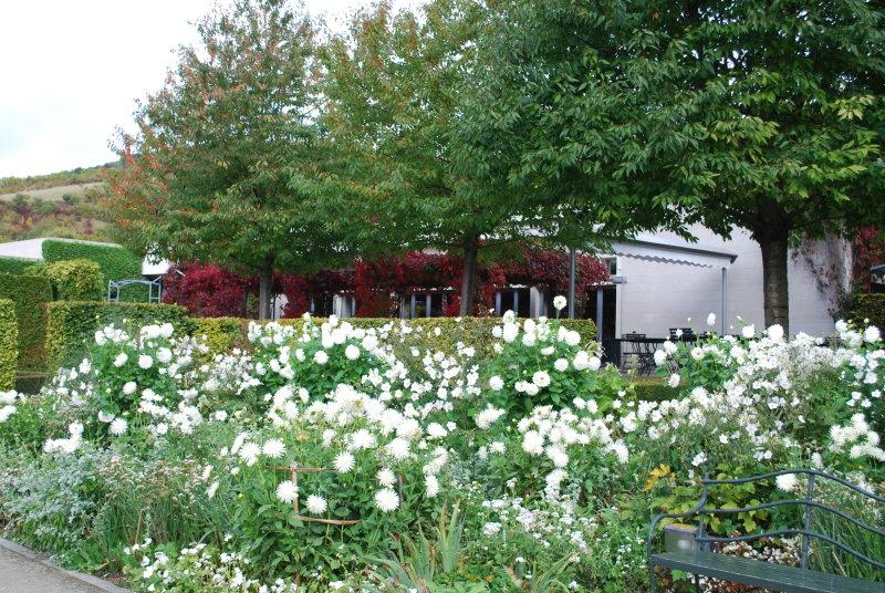 Jardin du mdig stouring in france for Jardin royal niort