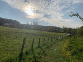 Randonnée dans la campagne vernonnaise avec Martine, votre guide habitant sur Stouring !